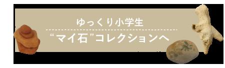 """_""""マイ石""""コレクション"""