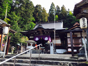 gochikuin-01-s